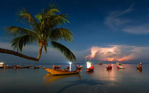 шторм, лодки, пальма, Таиланд