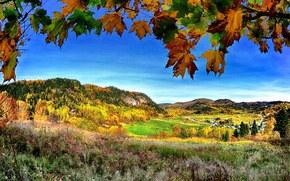 toamnă, Munți, Hills, copaci, domeniu, peisaj