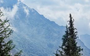 Kirguistán, Bishkek, montañismo, naturaleza, Montañas, ataviar, Rocas, cañón, Ala-Archa, subir, base, Razek, dibujo, acuarela, Michael mukhortov, jc-mike, estudio de diseño de la buena suerte, capricornus