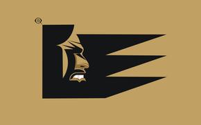 Logo, design, artworks, art, digital, vector, zelko, radic, bfvrp