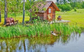 pond, cabin, trees, landscape