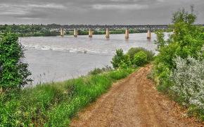 road, river, bridge, trees, landscape