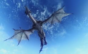 sky, dragon, 3d