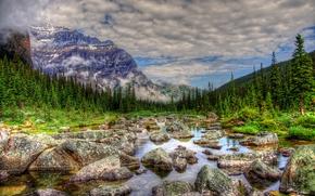 río, piedras, árboles, Montañas, paisaje