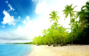 пейзажі, пляж, пісок, пальми, вода, море, океан, літо, берег, хвилі, хмари, небо, сонце «